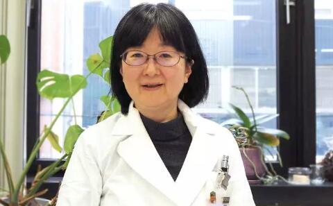 名医记事丨齐藤光江教授,一名女外科医生的心路历程