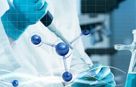 科学家发现DC与NK细胞有助于PD-1免疫治疗的成功应答