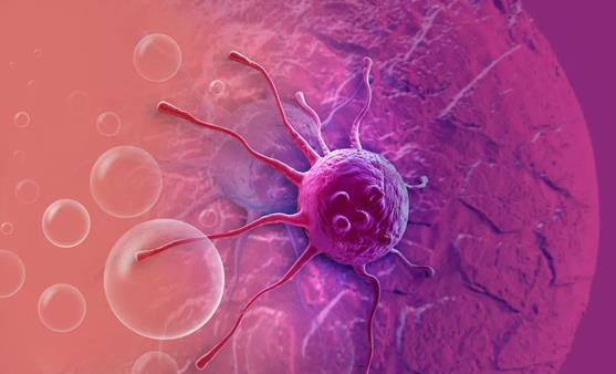 顺天堂大学教授谈免疫细胞治疗的数据评估