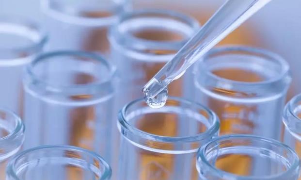 晚期胰腺癌的免疫细胞治疗