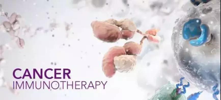 日本免疫专家谈细胞治疗的科学评估