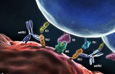 炎症解读5 | 自体免疫疾病