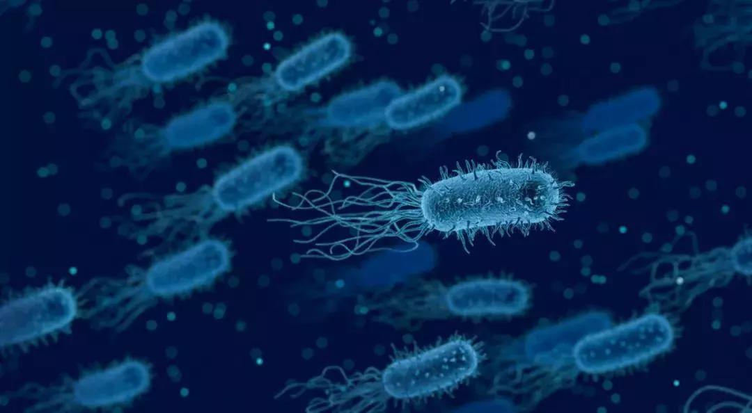 海外医讯 | 科学家发现癌细胞上新信号,新的免疫疗法或将到来