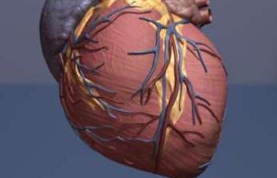 美国心脏学会:心脏疾病或与癌症密切相关