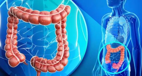 海外医讯 | 美国医师协会(ACP)发布大肠癌筛查指南