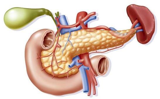 胰腺癌药物治疗的进展