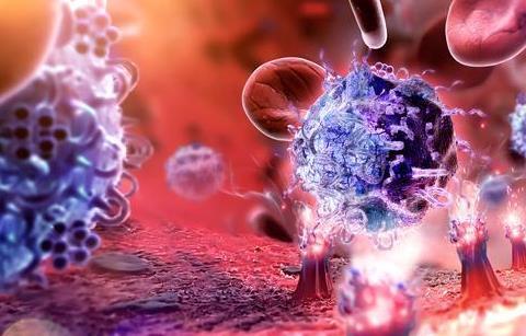 """新型""""化学免疫疗法""""治疗脑肿瘤有显著疗效"""