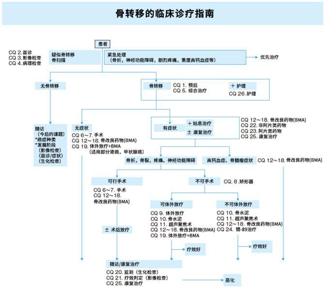 日本2015癌症骨转移指南(1)