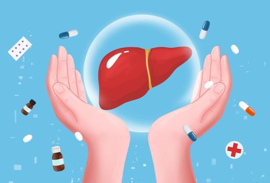 肝细胞癌的免疫治疗新进展