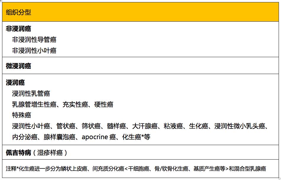 日本乳腺癌学会发布《乳腺癌患者指南》2019年版(八)